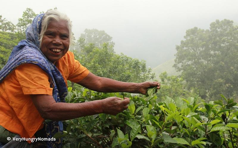 Local woman in Ella, Sri Lanka - People we meet travelling