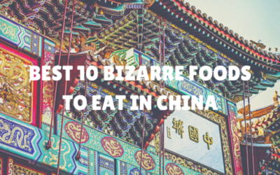 Bizarre Foods to Eat in China