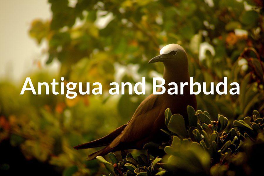 Antigua and Barbuda Featured