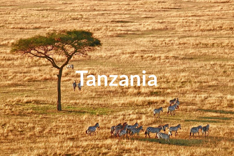 Tanzania Featured