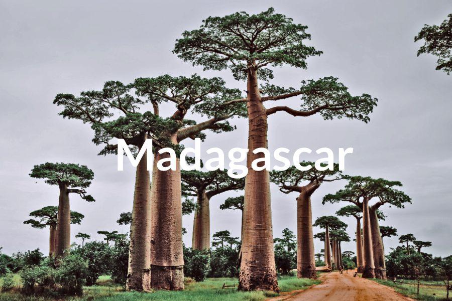 Madagascar Featured